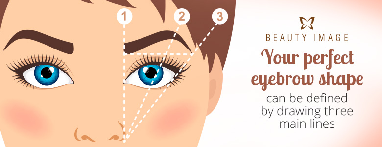 Measurement of a Perfect Eyebrow Shape